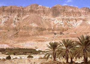 picture-of-judean-desert